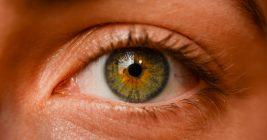 Ein Auge einer Person